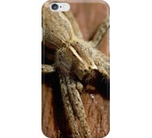 Nursery web spider inside greenhouse iPhone Case/Skin