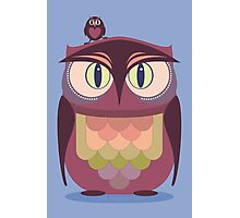 THE SAT UPON OWL Photographic Print