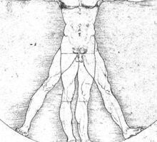 Da Vinci Vitruve Sticker