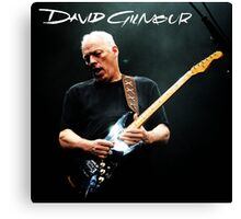 David Gilmour Tour 2016 Canvas Print