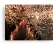 Sakura trees are full bloom at Meguro river Metal Print