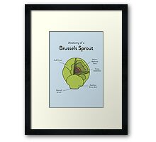 Sprout Framed Print