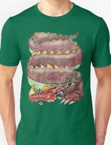 Musical Dragon  Unisex T-Shirt