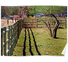 Fence, Shadow's, Tree. Poster