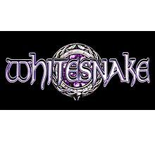 Whitesnake Purple Albums 2016 Photographic Print
