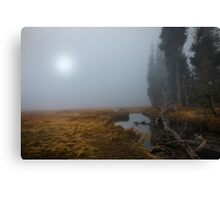 Upper Meadow and Kings Creek. Canvas Print