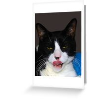 HUNGRY TUXEDO CAT Greeting Card