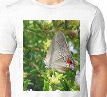 BEAUTIFUL BUTTERFLY FEEDING Unisex T-Shirt