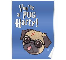 Harry Pug Poster