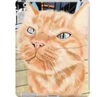 Oliver - the Sniffy Norwegian Orange Tabby iPad Case/Skin