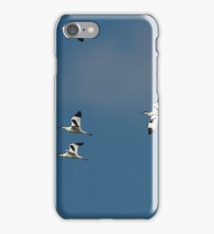 Flying Avocets  iPhone Case/Skin