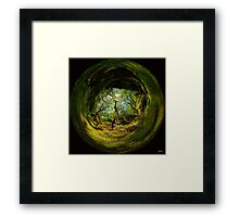 Ness Glen, Mystical Irish Wood Framed Print