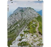 Mountain top panorama iPad Case/Skin