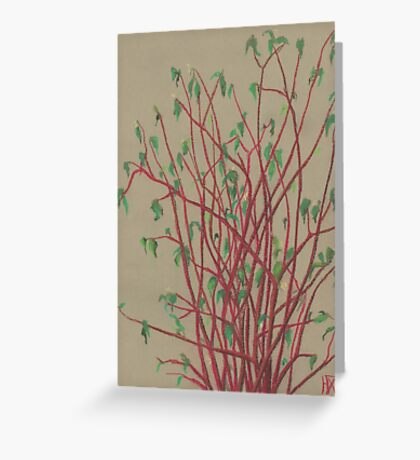 """Red twigs"", pastel drawing, nature art, green, red, tree branches Greeting Card"