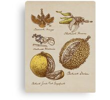 Steampunk  Fruit Canvas Print