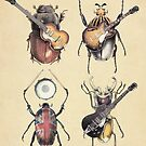 Meet the Beetles by Eric Fan