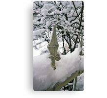 Fence in Winter Canvas Print