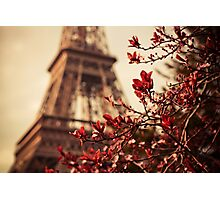 Eiffel Photographic Print