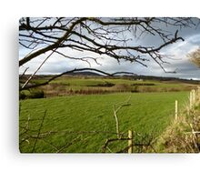 The Green Fields Of Home Canvas Print