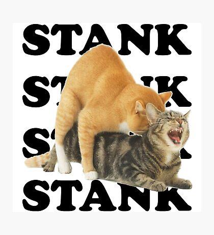 STANK CAT hoot SWAGGIN hoot SHIRT AIGHT Photographic Print