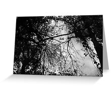 Look Up - Black and White Greeting Card