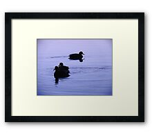 Ducks at Sunset Framed Print