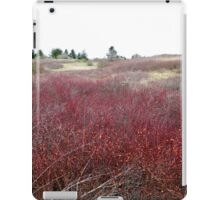 Winter Brush ~ Texture and Pattern iPad Case/Skin