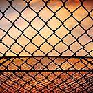 Caged by David Lamb