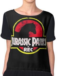 Jurassic Parks and Rec Distressed  Chiffon Top