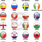 countries join the euro cup 2016 by h1978