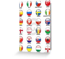 countries join the euro cup 2016 Greeting Card