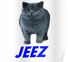jeez what a cool cat Poster
