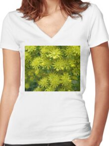 Yellow Succulent Flowers Photograph Women's Fitted V-Neck T-Shirt