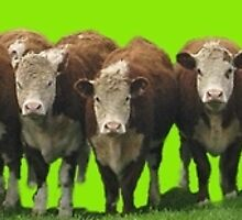 Poll Herefords by YouBeaut Designs