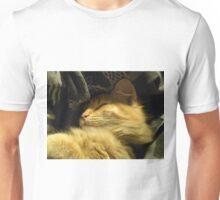 Golden Snuggle Unisex T-Shirt