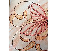 Sues Amber Butterfly Lily Photographic Print