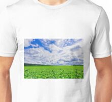 young green grass on a sunny spring day Unisex T-Shirt