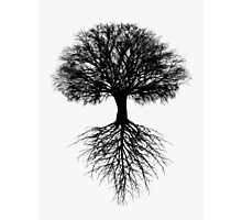 Tree of Life Photographic Print