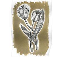 Tulips in charcoal (3 of 3) Poster