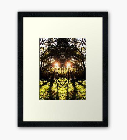dmt series #2 Framed Print