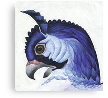 Blue Hawk Canvas Print