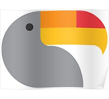 a toucan Poster