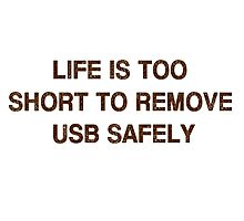 Pc Funny USB Photographic Print