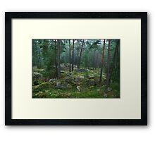 Scandinavian forest Framed Print