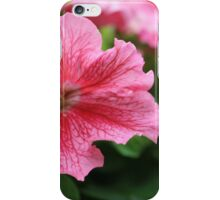Pink Petunia iPhone Case/Skin