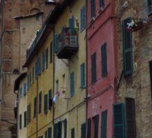 Colourful Siena Sticker