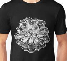 Echeweria Unisex T-Shirt