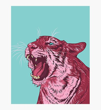 Magenta tiger Photographic Print