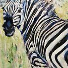 zebra by pamfox