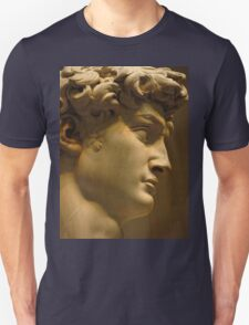 Michelangelo Study; The Face T-Shirt